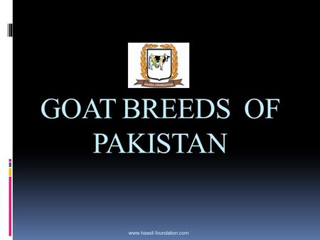 GOAT BREEDS OF PAKISTAN