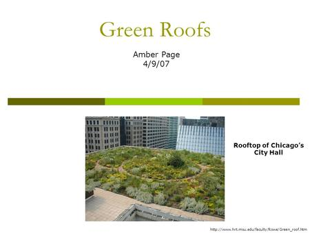 Green Roofs Amber Page 4/9/07 Rooftop of Chicago's City Hall