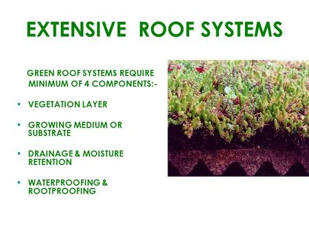 EXTENSIVE ROOF SYSTEMS