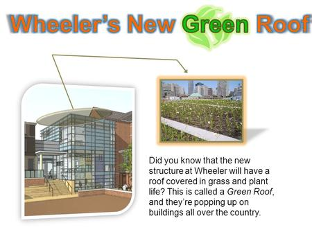 Did you know that the new structure at Wheeler will have a roof covered in grass and plant life? This is called a Green Roof, and they're popping up on.