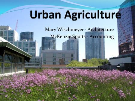 Mary Wischmeyer - Architecture McKenzie Spotts - Accounting.