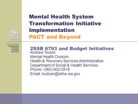 Mental Health System Transformation Initiative Implementation