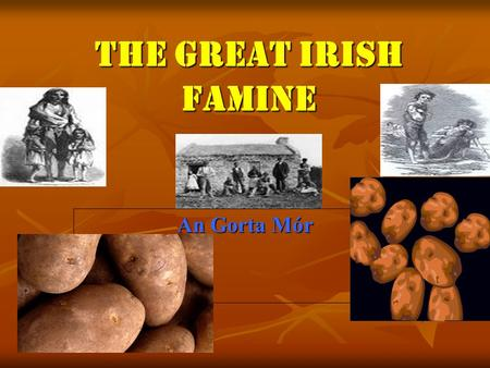 The Great Irish Famine An Gorta Mór. Contents Page 1:Introduction Page 1:Introduction Page 2:Contents Page 2:Contents Page 3:The Potato Page 3:The Potato.