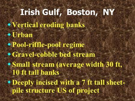 Irish Gulf, Boston, NY  Vertical eroding banks  Urban  Pool-riffle-pool regime  Gravel-cobble bed stream  Small stream (average width 30 ft, 10 ft.