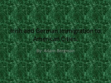 Irish and German Immigration to American Cities. By: Adam Bergman.