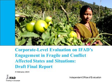 Corporate-Level Evaluation on IFAD's Engagement in Fragile and Conflict Affected States and Situations: Draft Final Report 4 February 2014.