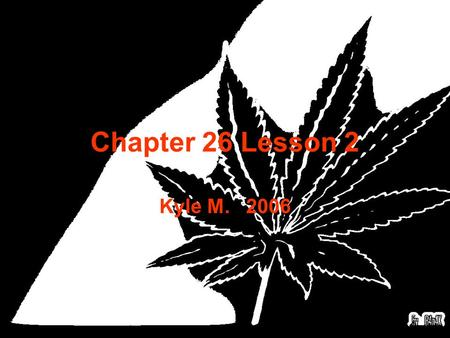 Chapter 26 Lesson 2 Kyle M. 2006 1. What do stimulants do? A. Slow down the body. B. Speed up the central nervous system. C. Makes you tired. D. None.