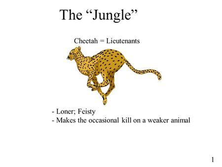 "The ""Jungle"" Cheetah = Lieutenants - Loner; Feisty"