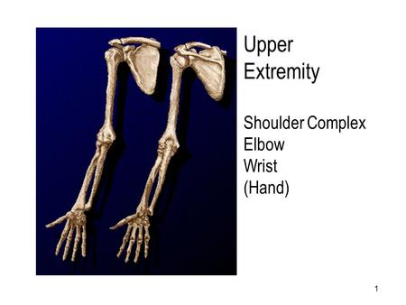 Upper Extremity Shoulder Complex Elbow Wrist (Hand) Shoulder.