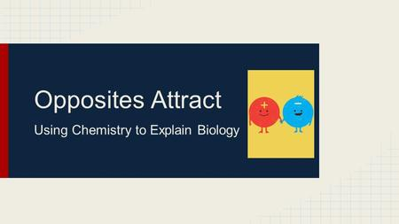Opposites Attract Using Chemistry to Explain Biology.