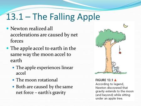 13.1 – The Falling Apple Newton realized all accelerations are caused by net forces The apple accel to earth in the same way the moon accel to earth The.
