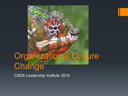 Organizational Culture Change CSDA Leadership Institute 2013.