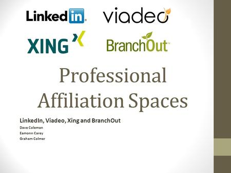 Professional Affiliation Spaces LinkedIn, Viadeo, Xing and BranchOut Dave Coleman Eamonn Carey Graham Colmer.