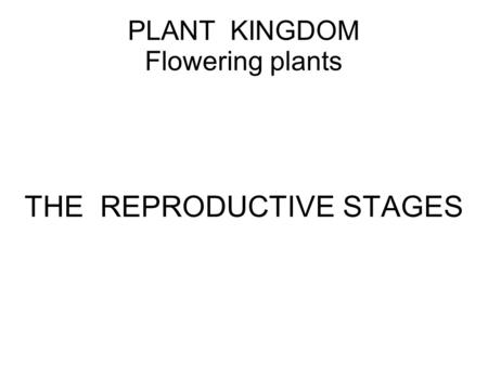 PLANT KINGDOM Flowering plants THE REPRODUCTIVE STAGES.