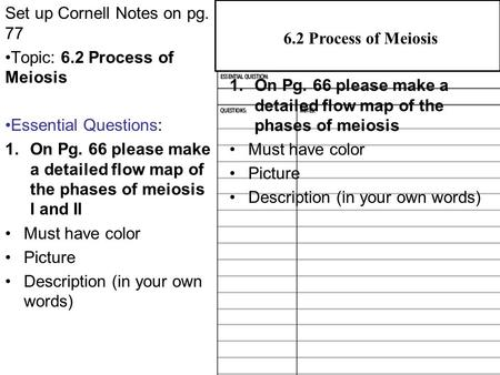 6.2 Process of Meiosis Set up Cornell Notes on pg. 77 Topic: 6.2 Process of Meiosis Essential Questions: 1.On Pg. 66 please make a detailed flow map of.