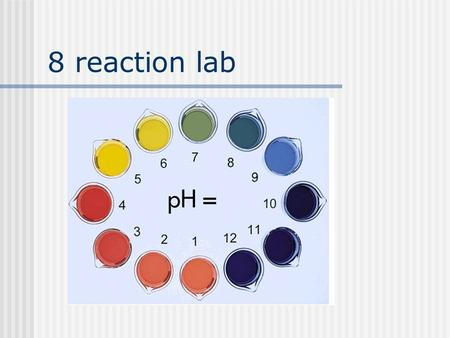 8 reaction lab.