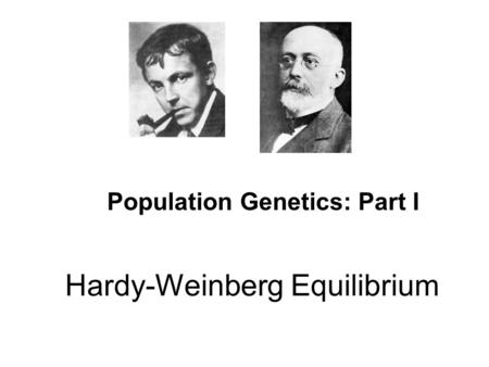 Hardy-Weinberg Equilibrium Population Genetics: Part I.