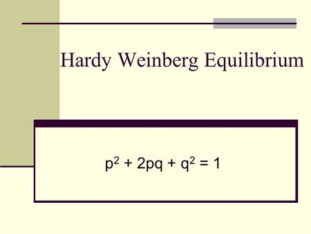 Hardy Weinberg Equilibrium p 2 + 2pq + q 2 = 1. Two scientists independently derived the basic principle of population genetics called the Hardy – Weinberg.