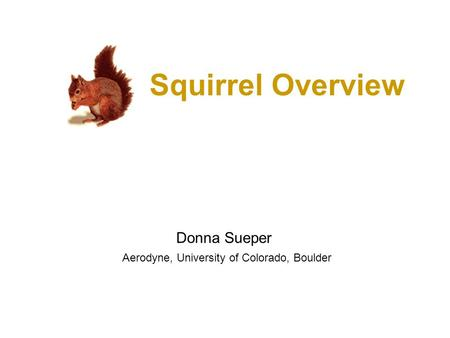 Squirrel Overview Donna Sueper Aerodyne, University of Colorado, Boulder.