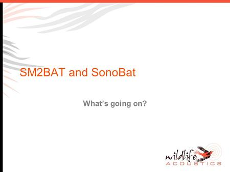 SM2BAT and SonoBat What's going on?. Background There has been some feedback that SM2BAT and SonoBat do not integrate well together. SonoBat software.