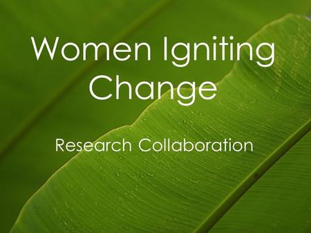 Women Igniting Change Research Collaboration. Overview Domestic violence in Aotearoa Domestic violence research Women leaving Collaborative Research 2.