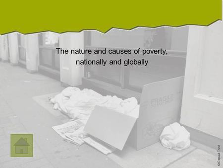 Section One The nature and causes of poverty, nationally and globally © Depaul Trust.
