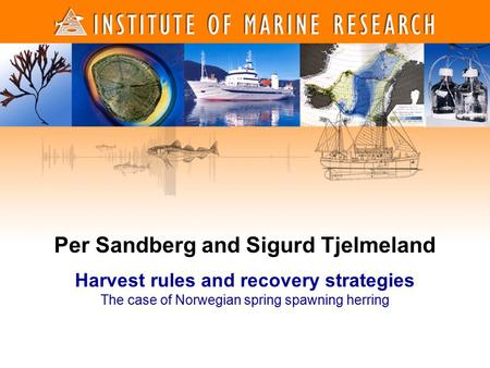 1 1 Per Sandberg and Sigurd Tjelmeland Harvest rules and recovery strategies The case of Norwegian spring spawning herring.