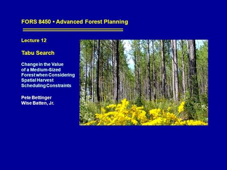 FORS 8450 Advanced Forest Planning Lecture 12 Tabu Search Change in the Value of a Medium-Sized Forest when Considering Spatial Harvest Scheduling Constraints.