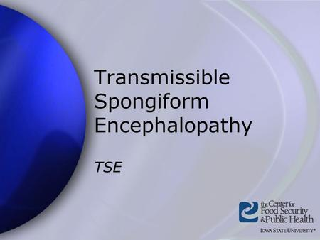 Transmissible Spongiform Encephalopathy TSE. Center for Food Security and Public Health Iowa State University - 2004 Overview Organism History Epidemiology.