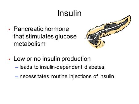 Insulin Pancreatic hormone that stimulates glucose metabolism Low or no insulin production –leads to insulin-dependent diabetes; –necessitates routine.