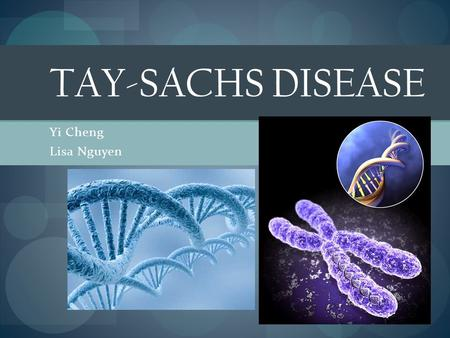 Yi Cheng Lisa Nguyen TAY-SACHS DISEASE. Symptoms of Tay-Sachs Disease Infantile Tay-Sachs Disease: Infants with Tay-Sachs disease appear to develop normally.