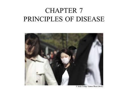 CHAPTER 7 PRINCIPLES OF DISEASE © Andy Crump / Science Photo Library.
