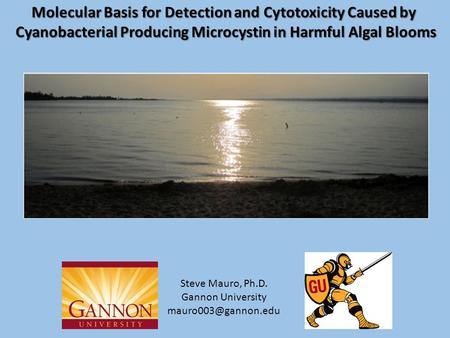 Molecular Basis for Detection and Cytotoxicity Caused by Cyanobacterial Producing Microcystin in Harmful Algal Blooms Cyanobacterial Producing Microcystin.