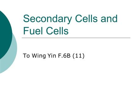 Secondary Cells and Fuel Cells To Wing Yin F.6B (11)