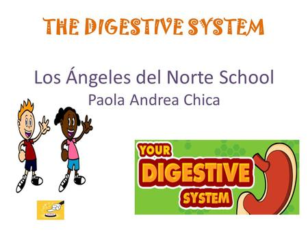 THE DIGESTIVE SYSTEM Los Ángeles del Norte School Paola Andrea Chica.