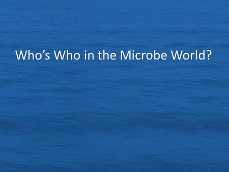 Who's Who in the Microbe World?. Remember the Six Key Concepts of Marine Microbes Microbes are everywhere, they are extremely abundant and diverse Most.