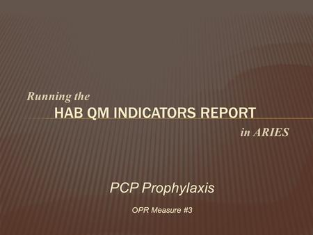 Running the HAB QM INDICATORS REPORT in ARIES PCP Prophylaxis OPR Measure #3.