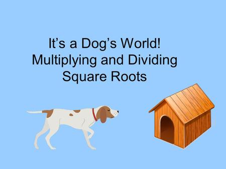 It's a Dog's World! Multiplying and Dividing Square Roots.