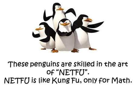 "These penguins are skilled in the art of ""NETFU"". NETFU is like Kung Fu, only for Math."