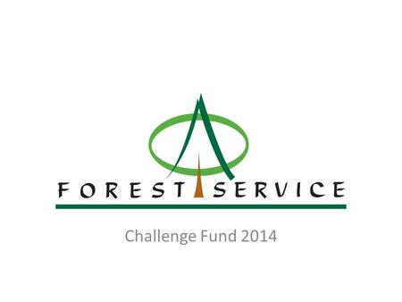 FOREST SERVICE NIEA Challenge Fund 2014. Background Forest Service – An agency of the Department of Agriculture and Rural Development responsible for.