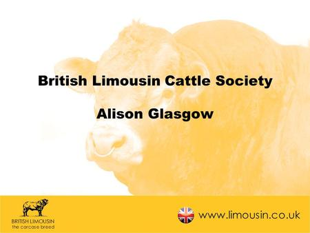 British Limousin Cattle Society Alison Glasgow. What's been going on? Database development ~ Registrations & Perf. Recording Addition of Online Census.