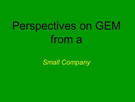 Perspectives on GEM from a Small Company. Perspectives on GEM Early issues & efforts Initial vision about the project when we sought funding and its additional.