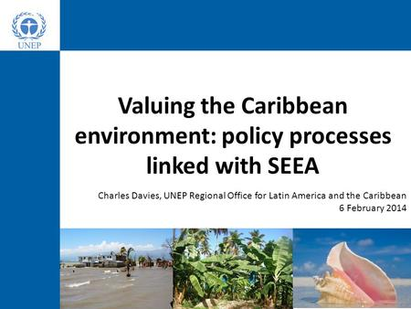 Valuing the Caribbean environment: policy processes linked with SEEA Charles Davies, UNEP Regional Office for Latin America and the Caribbean 6 February.