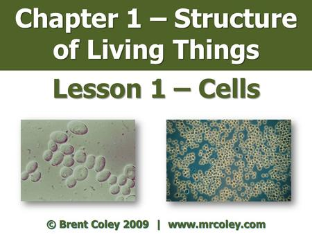 Chapter 1 – Structure of Living Things Lesson 1 – Cells © Brent Coley 2009 | www.mrcoley.com.
