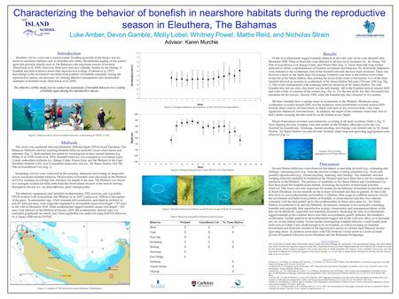 Characterizing the behavior of bonefish in nearshore habitats during the reproductive season in Eleuthera, The Bahamas Luke Amber, Devon Gamble, Molly.