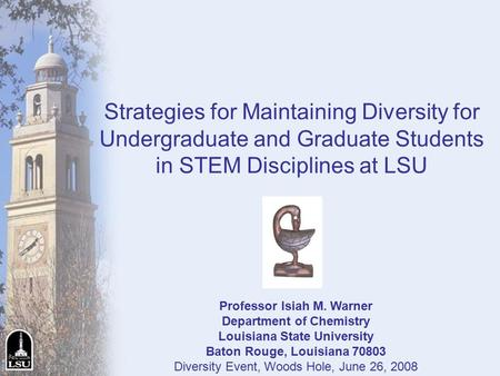 Strategies for Maintaining Diversity for Undergraduate and Graduate Students in STEM Disciplines at LSU Professor Isiah M. Warner Department of Chemistry.