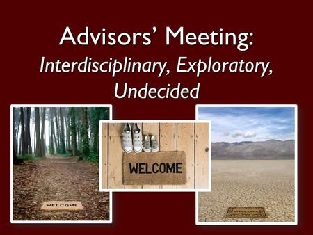 1 Advisors' Meeting: Interdisciplinary, Exploratory, Undecided.