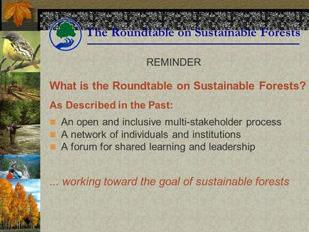 The Roundtable on Sustainable Forests What is the Roundtable on Sustainable Forests? As Described in the Past: An open and inclusive multi-stakeholder.