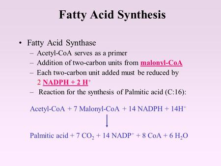 Fatty Acid Synthesis Fatty Acid Synthase –Acetyl-CoA serves as a primer –Addition of two-carbon units from malonyl-CoA –Each two-carbon unit added must.