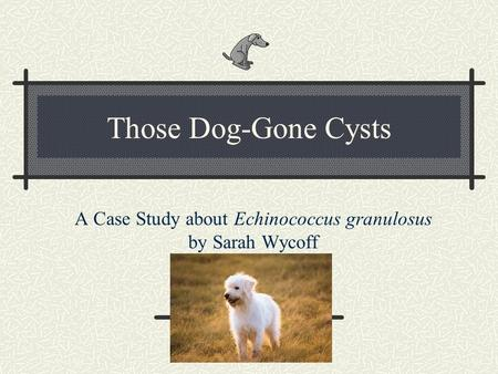 A Case Study about Echinococcus granulosus by Sarah Wycoff